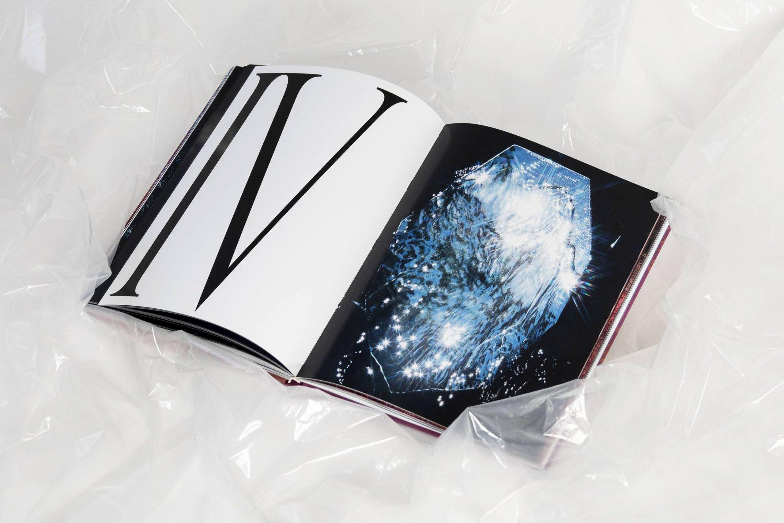<p>Hidden Hills by <em>Cornelia Thonhauser</em> & <em>Hannah Bhuiya</em> – Book</p>
