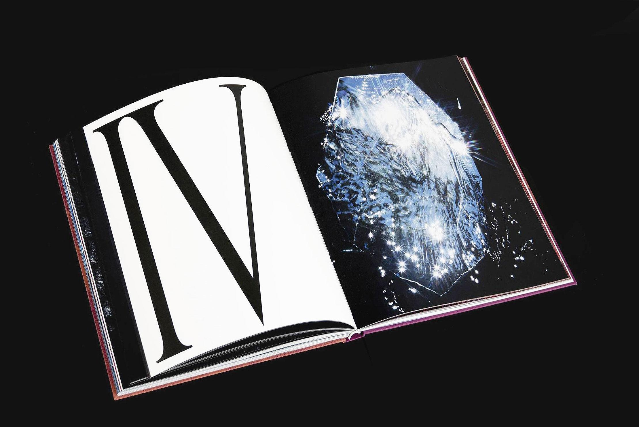 <p>Hidden Hills _<em>Cornelia Thonhauser</em> – Book</p>